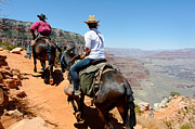 South Kaibab Trail Prints - Heading Back Up Print by Julie Niemela