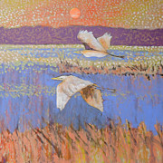 Sea Birds Paintings - Heading Home by Andy Andrews