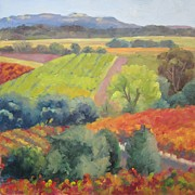Grapes Painting Posters - Healdsburg October  Poster by Deborah Cushman