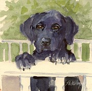 Black Lab Puppy Paintings - Healer by Sheila Wedegis