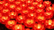 Xueling Zou - Healing Lights 2