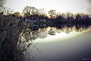 Seaford Photo Prints - Hearns Pond Reflection Print by Brian Wallace