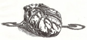 Jewelry Drawings Prints - Heart Bound Print by Law Stinson