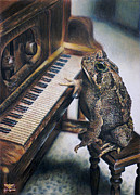 Frog Drawings - Heart of the Symphony by Cara Bevan