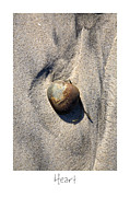 California Beach Art Framed Prints - Heart Framed Print by Peter Tellone