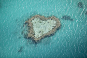 Heart Reef Framed Prints - Heart Reef, Great Barrier Reef, Queensland, Australia Framed Print by Gallo Images