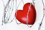 Difficulties Love Posters - Heart shape surrounded with barbed wire Poster by Sami Sarkis