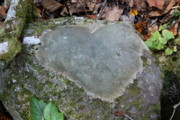 Gatlinburg Tennessee Prints - Heart Stone Print by Shannon Guest