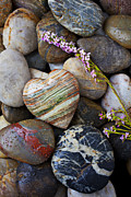 Rock Pile Prints - Heart stone with wild flower Print by Garry Gay