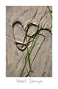 Sand Art Prints - Heart Strings Print by Peter Tellone
