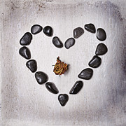 Stones Art - Heart With Rose by Joana Kruse