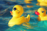 Ducklings Photos - Heartbreaker by Amy Tyler