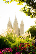 Salt Lake City Photos - Heavens Glory by La Rae  Roberts