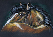 Horse Drawing Pastels Posters - Heavy Horse Drawing Poster by Angel  Tarantella