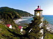 Lighthouse Pyrography Posters - Heceta Head Lighthouse Poster by Nick Korstad
