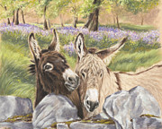 Donkey Framed Prints - Hee Haw Framed Print by Vanda Luddy
