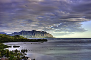 Fish Pond Prints - Heeia and Kualoa 2nd crop Print by Dan McManus