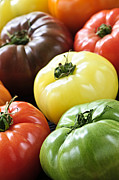 Fresh Food Prints - Heirloom tomatoes Print by Elena Elisseeva
