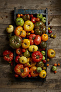 Y120817 Art - Heirloom Tomatoes by Lew Robertson