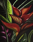 Kim Selig Metal Prints - Heliconia Flower Metal Print by Kim Selig