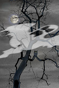 Ghost Tree Prints - Hello Halloween Print by Jim Wright