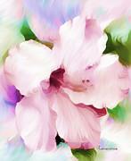 Hello Hibiscus Print by Zeana Romanovna