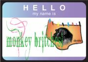 Britches Posters - Hello My Name Is Monkey Britches Poster by Donna Zoll
