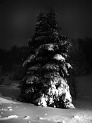 Snowy Night Metal Prints - Hello Winter Metal Print by Lj Lambert