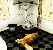 Key West Paintings - Hemingway Cat in a Bath by Blima Efraim