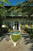 Photography Of Cats Prints - Hemingways House Key West Print by Susanne Van Hulst