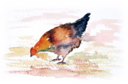 Ground Paintings - Hen In Study 2 by Carolyn Doe