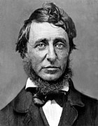 Thoreau Framed Prints - Henry David Thoreau Framed Print by Everett