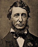 Thoreau Framed Prints - Henry David Thoreau Framed Print by Pg Reproductions