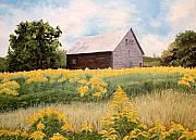 Field Originals - Henrys Barn by Carole Rickards