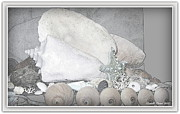 Natural White For Decorating Art - Her Majesty  by Danielle  Parent