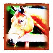 Pets Art Digital Art - Her Majesty by Terry Mulligan