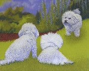 White Poodle Framed Prints - Her Royal Court Framed Print by Tracy L Teeter