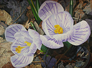 - Harlan Art - Heralds of Spring by - Harlan
