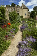 Gloucestershire Prints - Herbaceous Garden Plants, Uk Print by Bob Gibbons