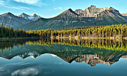 Mountains Posters - Herbert Lake - Quiet Morning Poster by Jeff R Clow