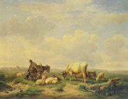 Collie Paintings - Herdsman and Herd by Eugene Joseph Verboeckhoven