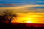 Boulder County Photos - Here Comes The Sun by James Bo Insogna