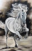 Horse Framed Prints - Hereje Framed Print by Ilse Kleyn