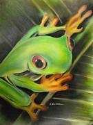 Tree Frog Pastels Prints - Heres lookin At Ya Print by Scott Easom