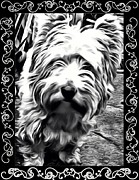 Dog Cards Prints - Heres looking at you Print by Tisha McGee