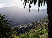 Canary Islands Metal Prints - Hermigua Village On Terraced Fields Metal Print by Justin Guariglia