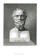 5th Century Bc; Posters - Herodotus, Greek Historian, Artwork Poster by Humanities And Social Sciences Librarynew York Library