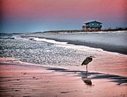 Michael Digital Art Posters - Heron and Beach House Poster by Michael Thomas