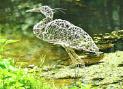 Art In Nature Sculpture Framed Prints - Heron day shot at the pond   Framed Print by Tommy  Urbans