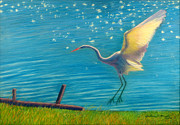 Blues Pastels Posters - Heron Great White   Pastel   Poster by Antonia Citrino